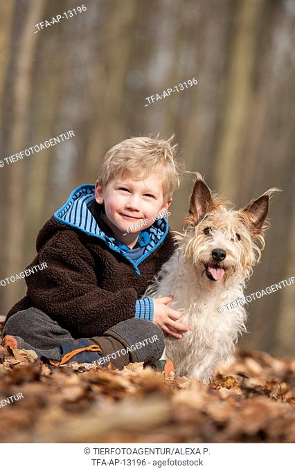 boy and mongrel