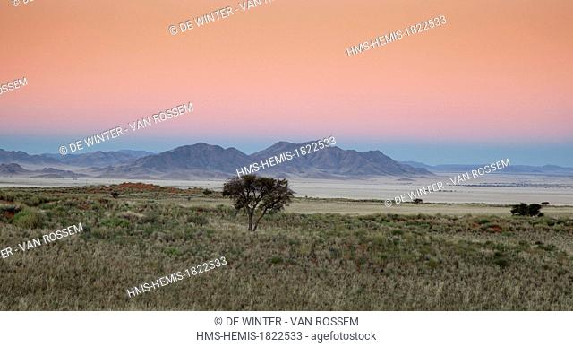 Namibia, Hardap region, Namib desert, Namib-Naukluft national park, Namib Sand Sea listed as World Heritage by UNESCO, Namib desert