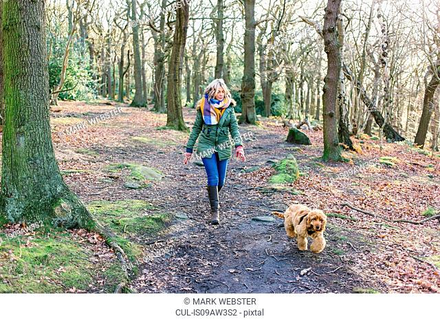 Woman taking puppy for walk in forest