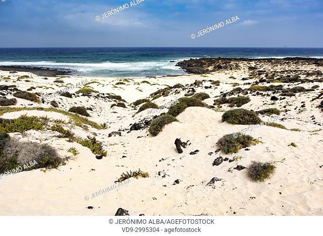 Malpais de la Corona beach. Caleta del Mojón Blanco. Dunes, white sand beach, Orzola. Lanzarote Island. Canary Islands Spain. Europe