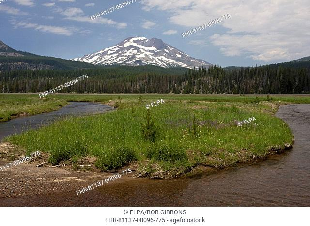 Restored river course using computer predictions after flood in 1966, Soda Creek, South Sister beyond, Sparks Lake, Cascades, Oregon, U S A