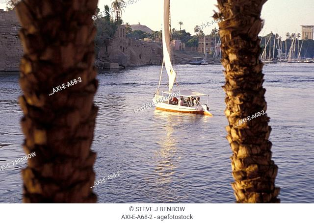 View through trees of felucca and Elephantine Island