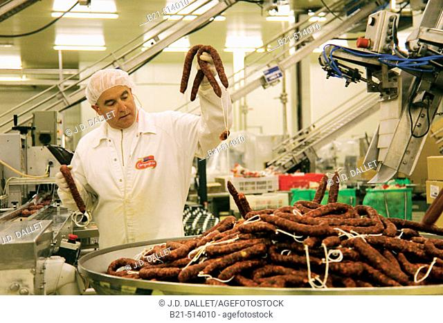 Packaging sausages at Campofrio factory. Burgos province, Castilla-León, Spain