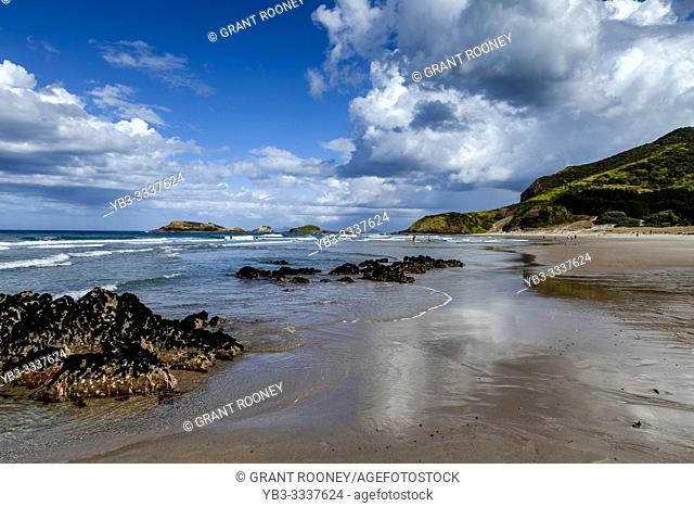 Ocean Beach, Whangarei Heads, North Island, New Zealand