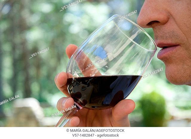 Man tasting red wine. Close view