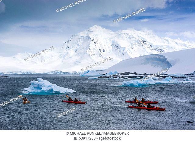 Kayakers paddling near Port Lockroy, Wiencke, Palmer Archipelago, Antarctica