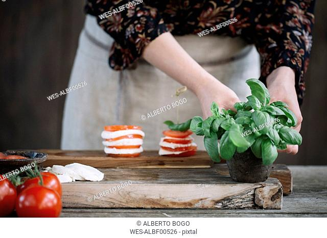 Woman preparing Caprese Salad, partial view