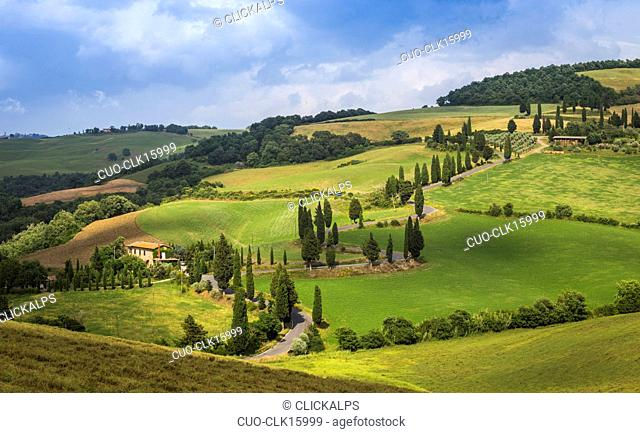 Countryside, Val d'Orcia, Tuscany, Italy, Europe