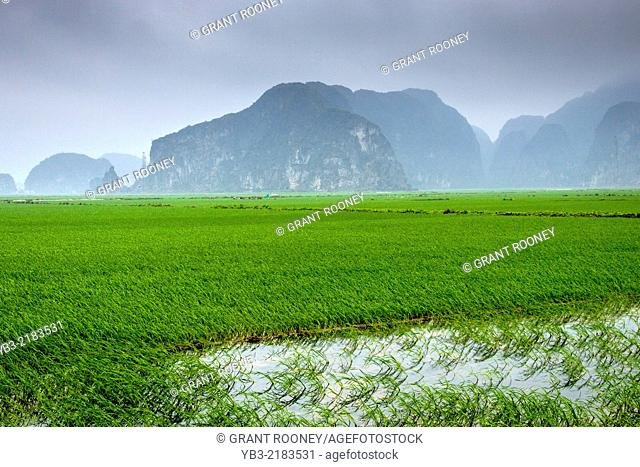 Mountain Scenery, Tam Coc, Ninh Binh Province, Vietnam
