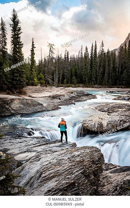 Woman standing at edge of waterfall, looking at view, Natural Bridge Falls, Kicking Horse River, Yoho National Park, Field, British Columbia, Canada