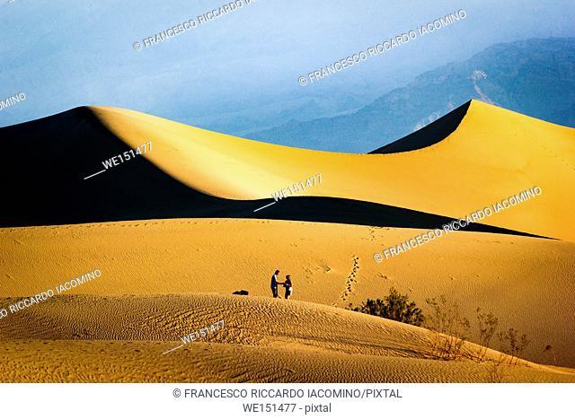 Mesquite flat dunes, Death Valley National Park, California, USA