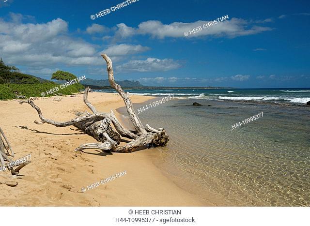 USA, Vereinigte Staaten, Amerika, South Pacific, Hawaii, Lihue, Aqua Resort