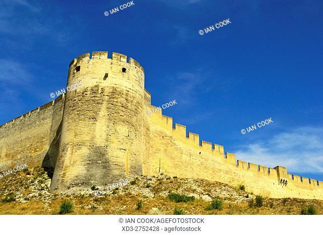 Fort Saint Andre, Villeneuve-lez-Avignon, Vaucluse Department, Provence, France