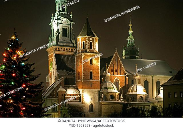 Night view Of Wawel Cathedral in Royal Wawel Castle Complex in Cracow, Royal Archcathedral Basilica of Saints Stanislaus and Wenceslaus on the Wawel Hill -...