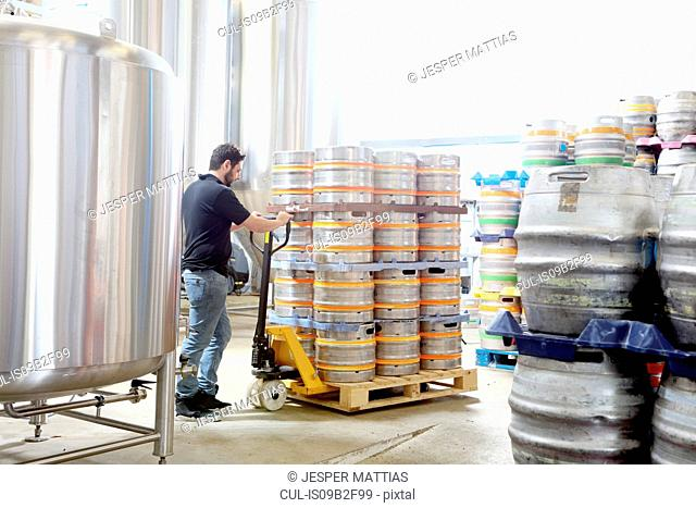 Worker in brewery organising beer barrels for delivery