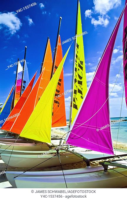 Colorful sailboats on Smathers Beach Key West Florida