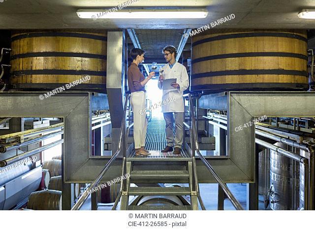 Vintners examining wine on platform in winery cellar