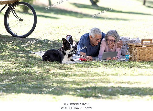 Senior couple lying on blanket on a meadow looking at digital tablet