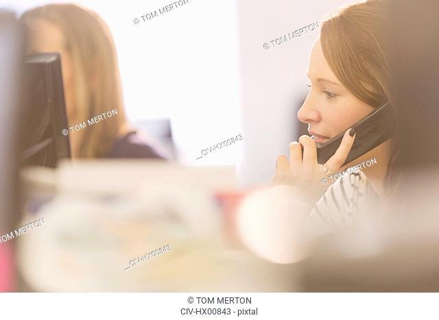 Businesswoman talking on telephone
