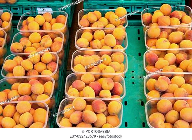 Small plastic boxes filled with fresh abricots at a French market in the Provence