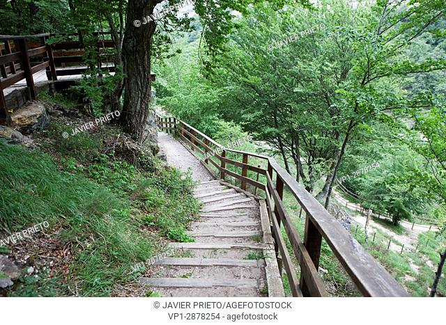 Wooden walkways and lookouts that run through the natural space of Covalagua. World Geopark Las Loras. Palencia. Castilla y León. Spain