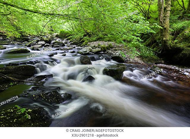 East Lyn River in Barton Wood in Exmoor National Park near Wilsham Lynmouth, Devon, England