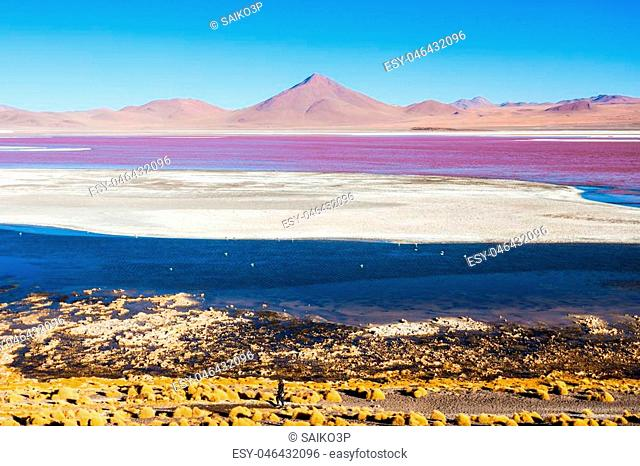 Laguna Colorada (Red Lake) is a most beautiful lake in the Altiplano of Bolivia