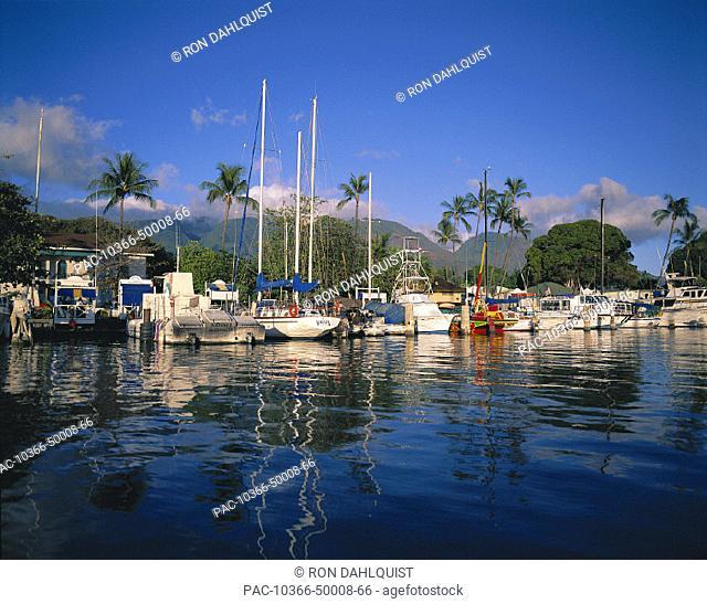 Hawaii Maui Lahaina Harbor w/ boats docked, calm surface reflections, palms bkgd afternoon light