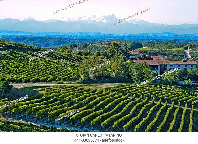 Italy, panorama of vineyards of Piedmont Langhe-Roero and Monferrato on the World Heritage List UNESCO. Panorama with the Monte Rosa mountain Italy, Piedmont