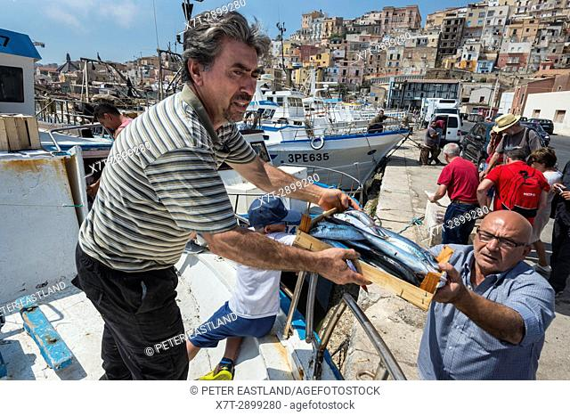 Fish being unloaded from a fishing boat in the fishing port of Sciacca in Southerm Sicily, Italy