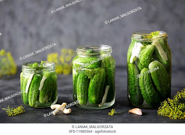 Three jars of gherkins with dill, garlic and horseradish