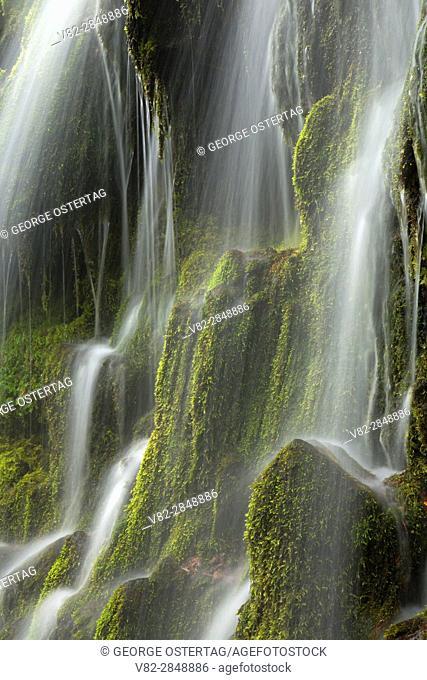 Upper Proxy Falls along Proxy Falls Trail, Three Sisters Wilderness, Willamette National Forest, Oregon