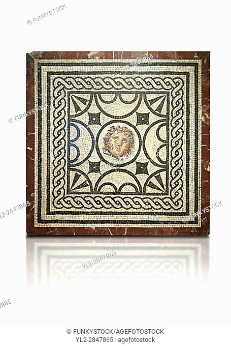Geometric black and white Roman mosaic with a Medusa panel from from Casa delle Vestali (VI, 1, 7), Naples Archaeological Musum, Italy