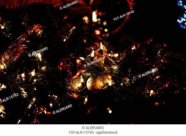 Christmas Tree, Christmas, Brazil