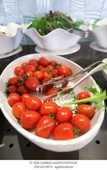 Still-life photo of tomatoes, Istanbul, Marmara Province, Turkey, Europe
