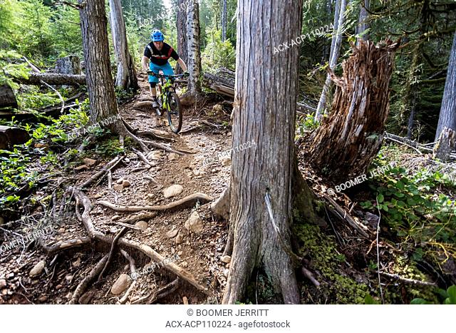 Cumberland's 'Off Broadway' a steep single track mountain bike trail is generally reserved for the advanced mountain biker, Cumberland, The Comox Valley