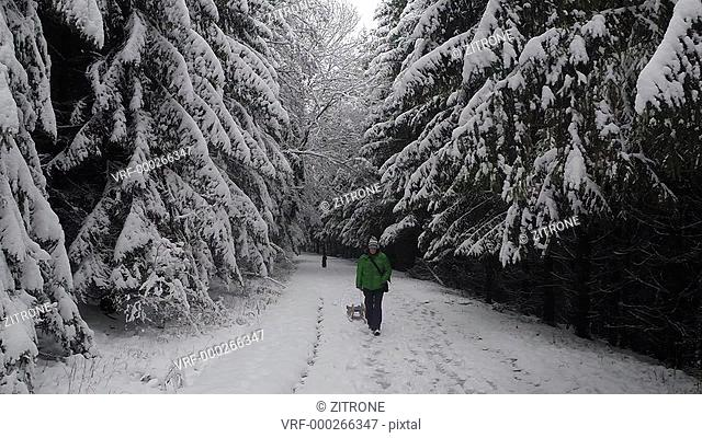 Dog following man with sled amidst snow covered forest, Stuttgart, Germany