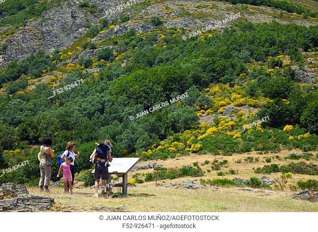Viewpoint. Ayllón Massif. Parque Natural Hayedo de Tejera Negra. Guadalajara province. Castilla-La Mancha. Spain