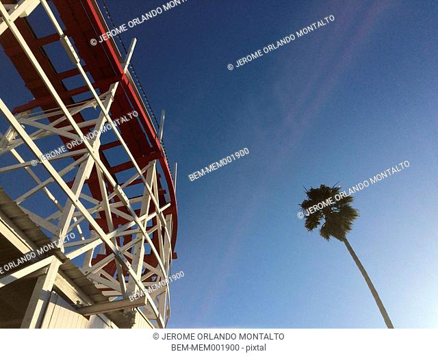Low angle view of roller coaster and palm tree