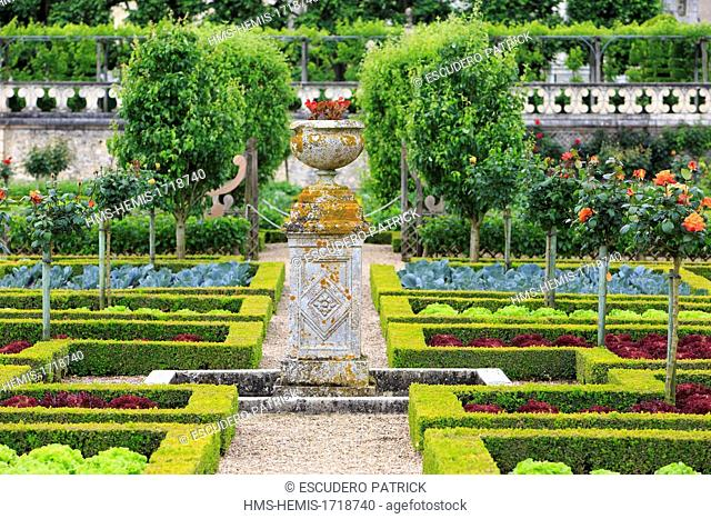 France, Indre et Loire, Loire Valley, listed as World Heritage by UNESCO, Villandry, gardens of Villandry castle owned by Henri and Angelique Carvalho