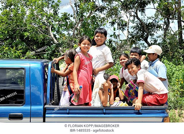 Village children are being driven to school on the back of a pickup, Chiquitania, Santa Cruz Department, Bolivia, South America