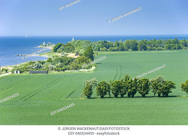 Landscape at the Fehmarnsund, Fehmarn, Baltic Sea, Schleswig-Holstein, Germany, Europe