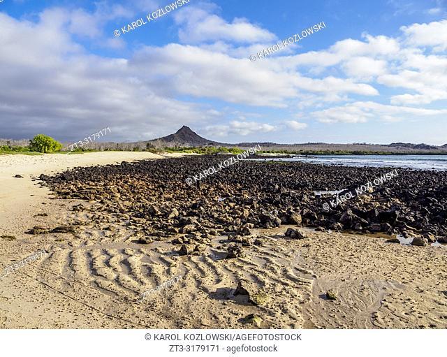 Beach in the Dragon Hill area, Santa Cruz or Indefatigable Island, Galapagos, Ecuador