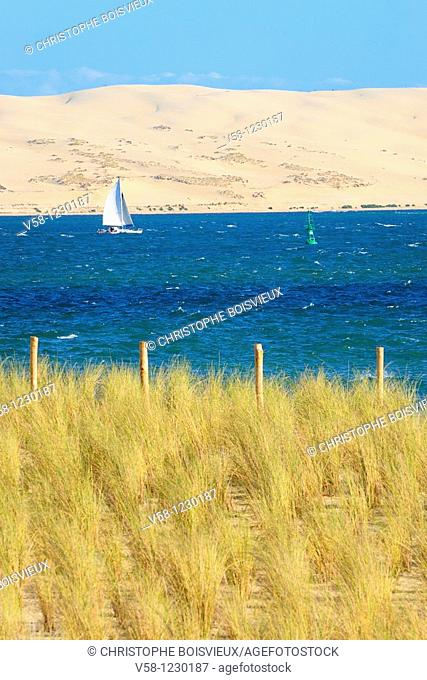 France, Gironde, Bassin d'Arcachon, The dune of Pilat seen from the pointe du Cap Ferret