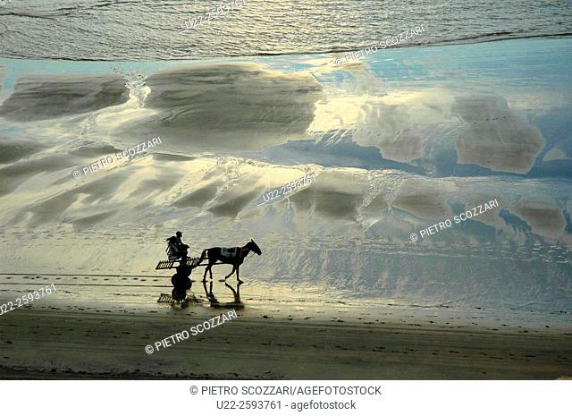 Brazil, Ceara State, Jeriocoacora, a Horse-cart along the Seashore at Sunset