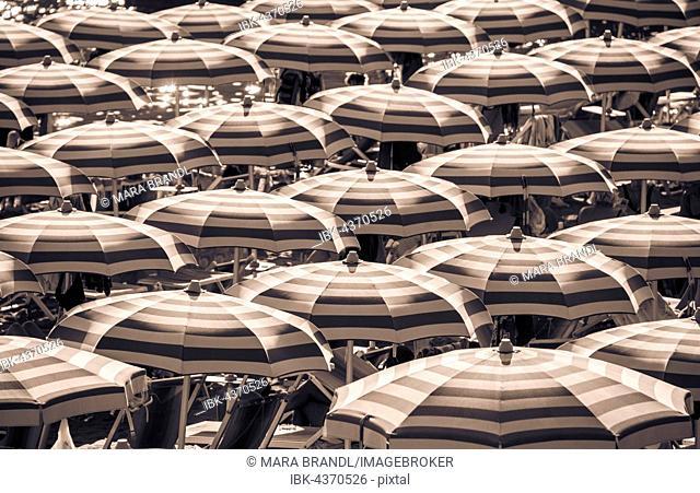 Strung, striped umbrellas on the beach, Sestri Levante, Liguria, Italy