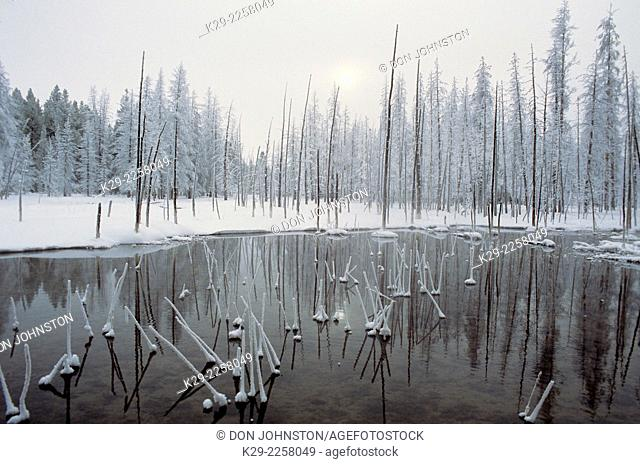 Nez Perce Creek with morning frost in winter, Yellowstone National Park, Wyoming, USA