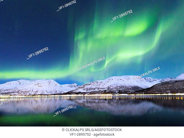 Northern Lights is reflected in Kafjorden. Kafjorden, Lyngen Alps, Troms, Norway, Lapland, Europe