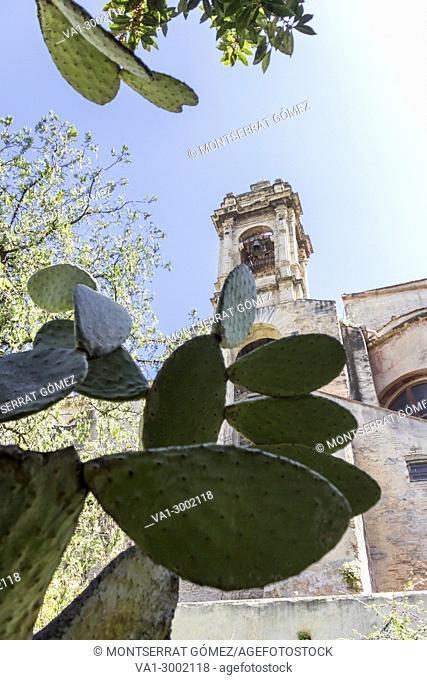 Church of San Giovanni degli Eremiti. Palermo, Sicily. Italy
