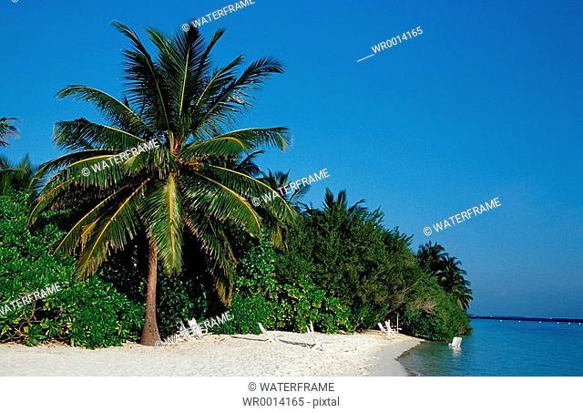 Lonely Beach, Indian Ocean, Maldives Island